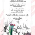 kunst-i-etalagegedicht-bij-schild-flower-boogie-woogie-poster-600x400-mei2011