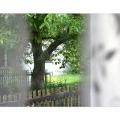 uitzicht-slaapkamer-600x400-dpi